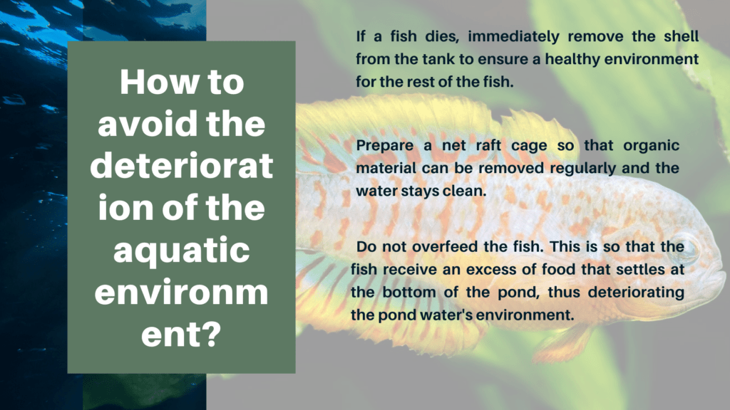 How to avoid the deterioration of the aquatic environment