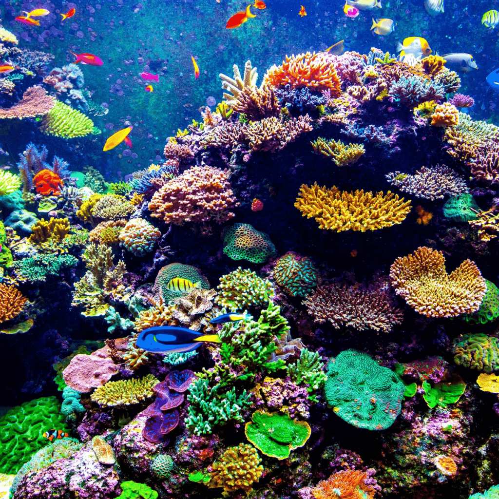 What Color Light is the Best for Coral Growth